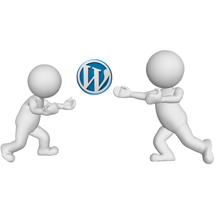 WordPress Web Design Play Ball